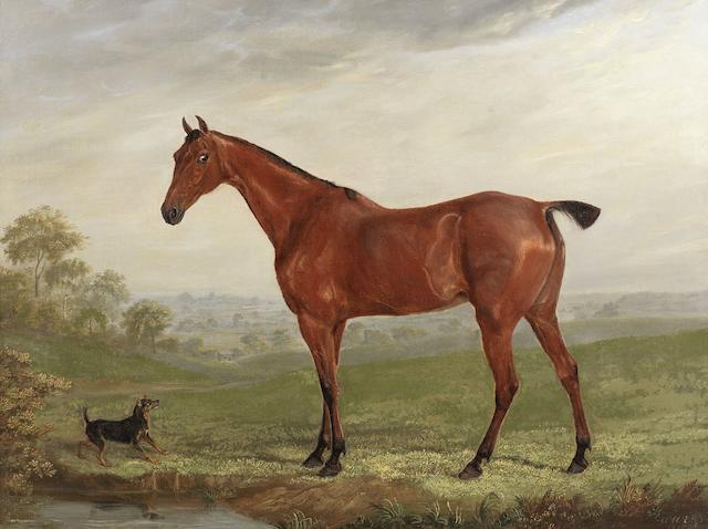 William Webb (British, 1780-1846) A chestnut horse in a landscape with terrier