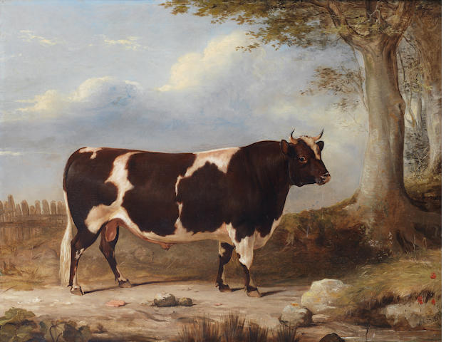 Gourlay Steell, RSA (British, 1819-1894) A red and white Ayrshire bull
