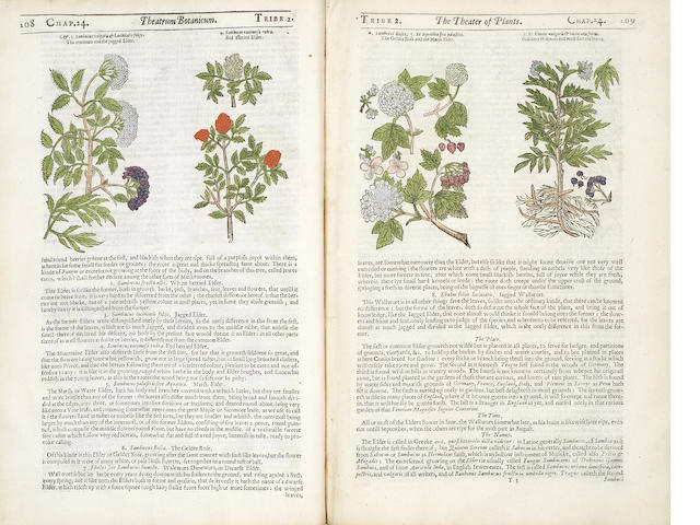 PARKINSON (JOHN) Theatrum botanicum: The Theater of Plants. Or, an Herball of a Large Extent, 1640