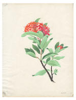 CHINESE SCHOOL BOTANICAL WATERCOLOURS A fine collection of 26 watercolours of flowers on laid paper