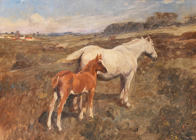 Sir Alfred James Munnings, PRA, RWS (British, 1878-1959) Grey mare and chestnut foal