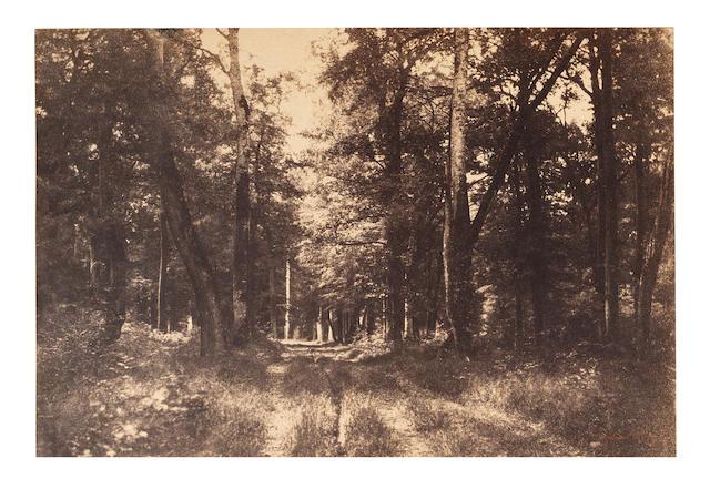 LE GRAY (GUSTAVE) Bas-Bréau, Forest of Fontainebleau, 1849-1852