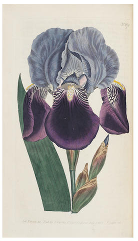 CURTIS (WILLIAM) The Botanical Magazine; Or, Flower-Garden Displayed, vol. 1-18, for W. Curtis, [-T. Curtis], 1787-1803