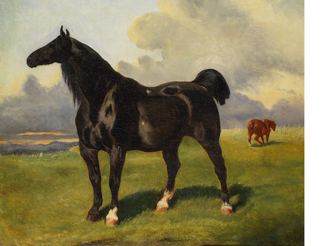 French School, 19th Century Stallion
