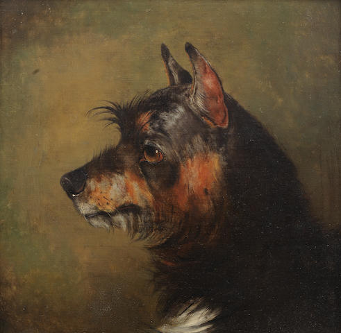 Alfred Wheeler (British, 1851-1932) A black and tan Terrier 14 x 15 1/2in. (37.5 x 38.5cm.)