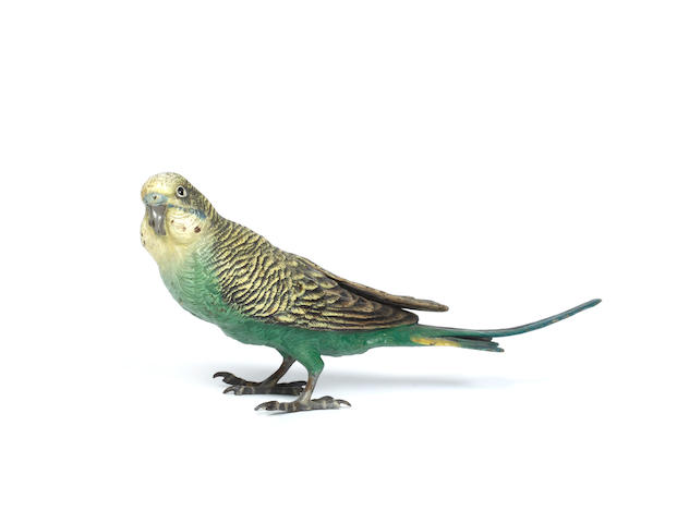 An Austrian cold painted bronze model of a budgerigar,Possibly by Franz Bergman