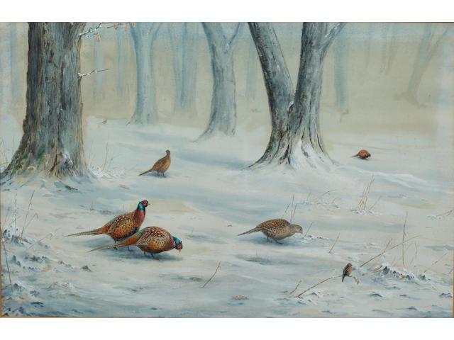 Vincent Balfour-Browne (British, 1880-1963) Pheasants in a snowy woodland landscape