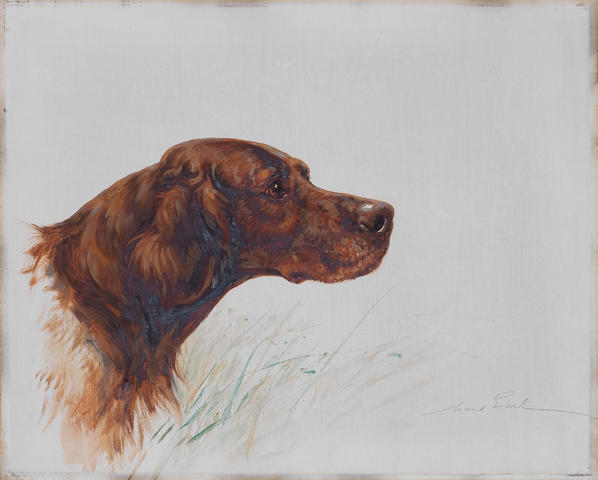 Maud Earl (British, 1863-1943) Red Setter 16 x 20in. (41 x 51cm.) unframed