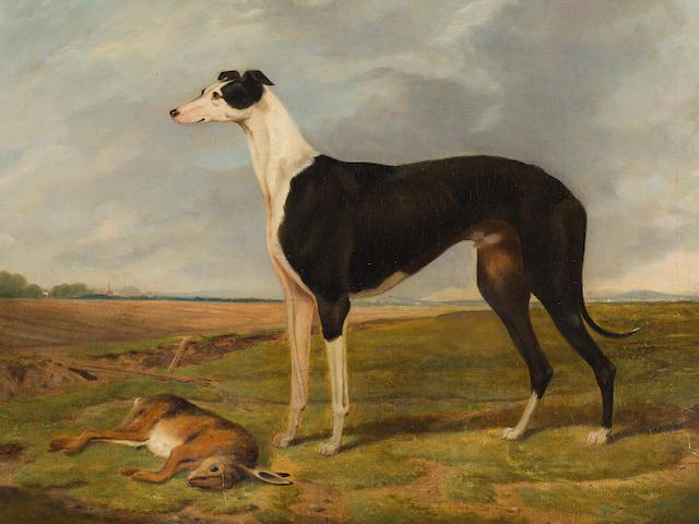 Henry Calvert (British, 1798-circa 1869) Brigadier, winner of the Waterloo Cup 1866