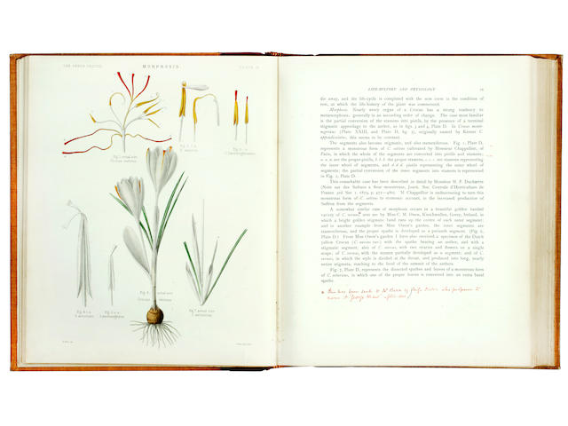 MAW (GEORGE) A Monograph of the Genus Crocus, Dulau, 1886