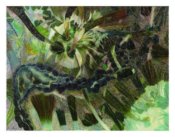 William Robinson (born 1936) Rainforest with Botan Creek, 1989