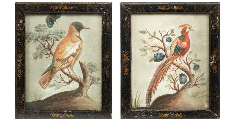 A pair of 18th century hand-coloured basso relievo pictures of birdsin the manner of Samuel Dixon after George Edwards