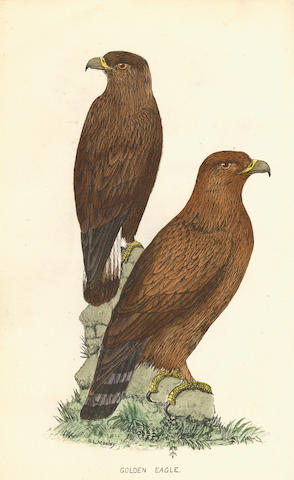 MOSLEY (SETH LISTER) A History of British Birds, their Nests and Eggs, 3 vol., Huddersfield, Mosley, [1881]-1884-1887-[1892]