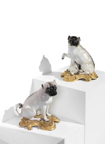 A pair Meissen ormolu-mounted pug dogs, mid 18th century