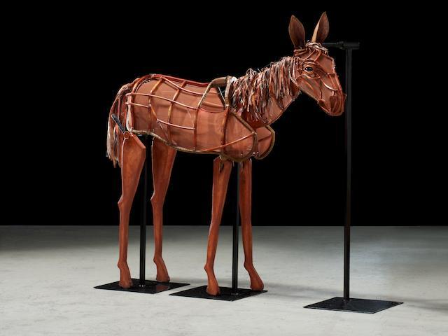 The foal (Joey)