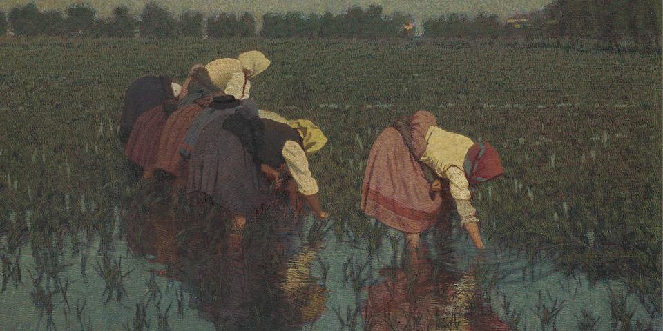 Angelo Morbelli (Italian, 1853-1919) Le risaiuole