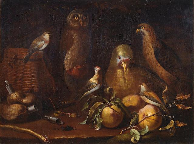 Bartolomeo Bimbi (Settignano 1648-1730 Florence) An owl, parrot, hawk and finches, with fruit and hunting paraphernalia