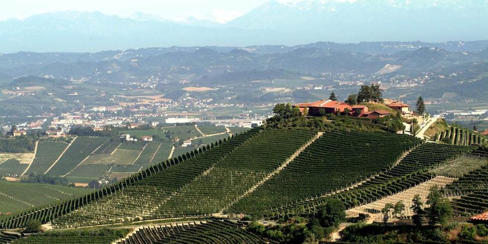 Taste, dine and stay at the Great Pio Cesare estate in Piemonte, Pio Cesare has been producing fine wines from Barolo and Barbaresco for five generations