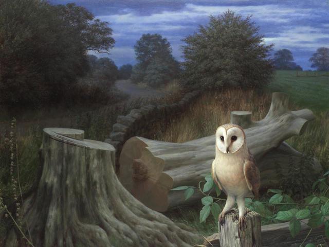 Raymond Booth (British, 1929-2015) Barn Owl at Dawn, Eccup