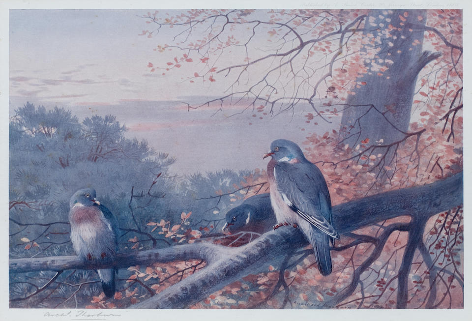 After Archibald Thorburn (British, 1860-1935) A group of four prints  ((4))