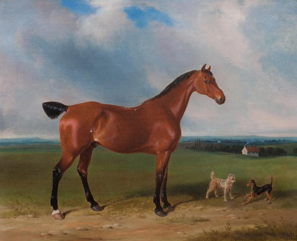 William Barraud (British, 1810-1850) A Bay Hunter and Terriers and Landscape
