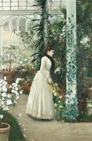 Alberto Pisa (Italian, 1864-1931) A hot house flower