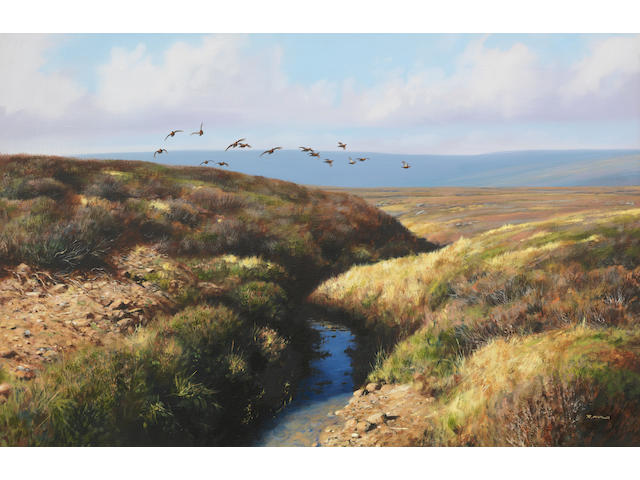 Rodger McPhail (British, born 1953) Grouse in Flight