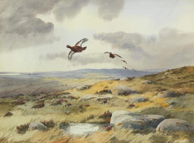 Robert W. Milliken (British, born 1920) Grouse in Flight