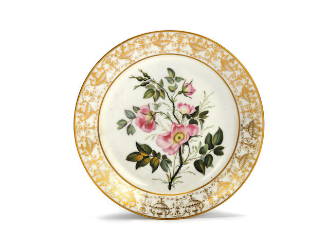 A rare Swansea botanical plate from the Gosford Castle Service, circa 1815-17
