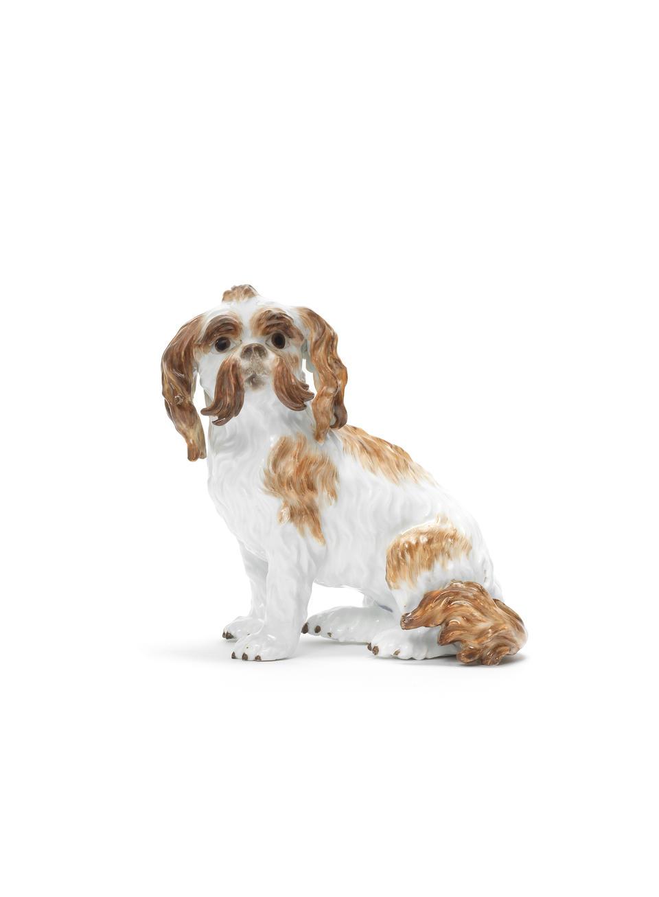 A Meissen model of a Bolognese terrier, circa 1820-30