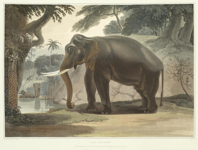 DANIELL (SAMUEL) A Picturesque Illustration of the Scenery, Animals, and Native Inhabitants, of the Island of Ceylon], [T. Bensley, 1808]