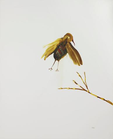 Sidney Nolan (1917-1992) Bird and Branch, c.1984