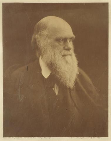 DARWIN (CHARLES) CAMERON (JULIA MARGARET) Portrait photograph of Charles Darwin, near half-length, facing left, [Freshwater, I.O.W., copyright 23 July 1868]