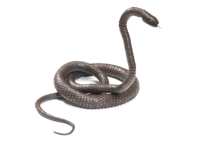 TANAKA TADAYOSHI 田中唯吉 (ALSO KNOWN AS MUNEYOSHI 宗義,  DIED 1950) IRON ARTICULATED MODEL OF A SNAKE 大蛇自在鉄置物 Taisho era (1912–1926), circa 1915