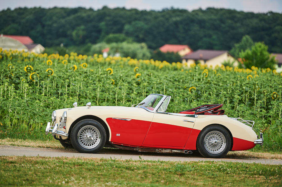 1964 Austin-Healey 3000 MkIII Convertible  Chassis no. HBJ8L-25899