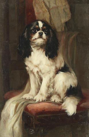 Hugh George Shaw (British, exh. 1880-1895) Cavalier King Charles Spaniel