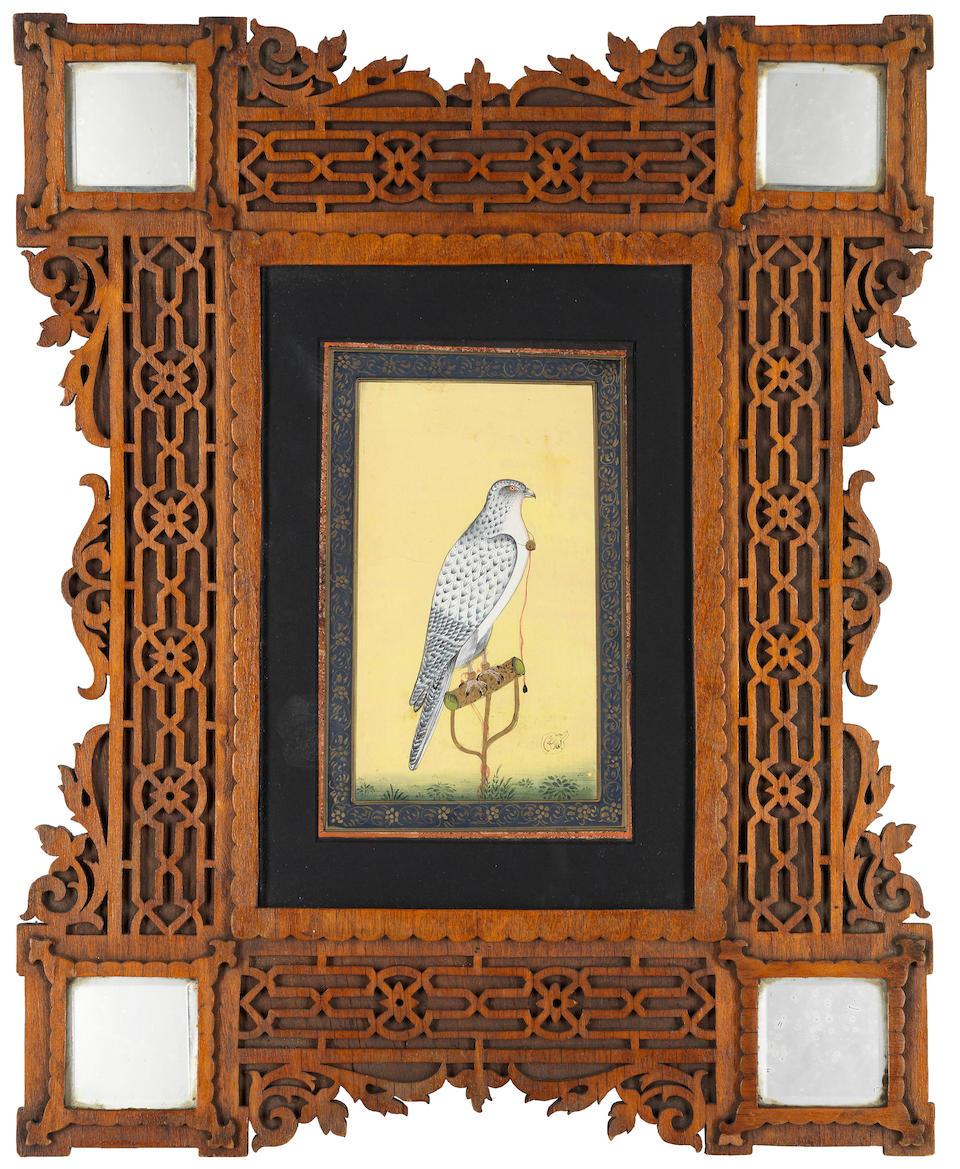 Indian school, late 19th century/early 20th century: A painted gouache of a falcon,